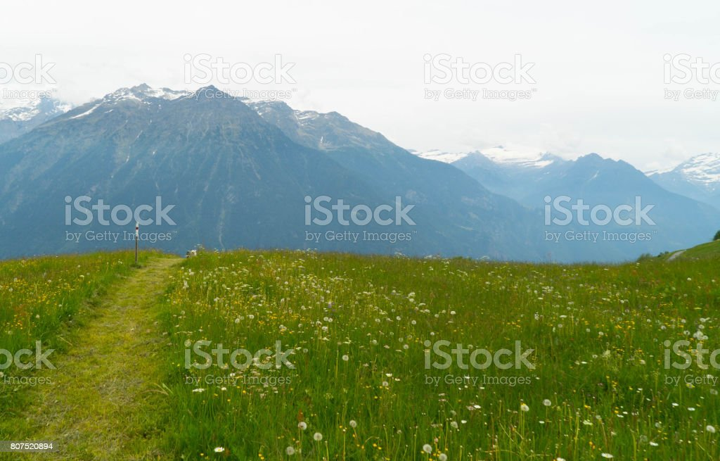 A footpath against the background of large mountains in the Swiss Alps. stock photo