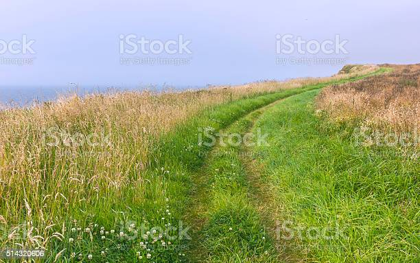 Photo of Footpath along Bempton Cliffs in summer, Yorkshire, UK.