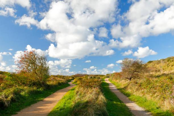 Sentier et piste cyclable à travers la Nature réserve de Renesse, Zeeland, Pays-Bas - Photo