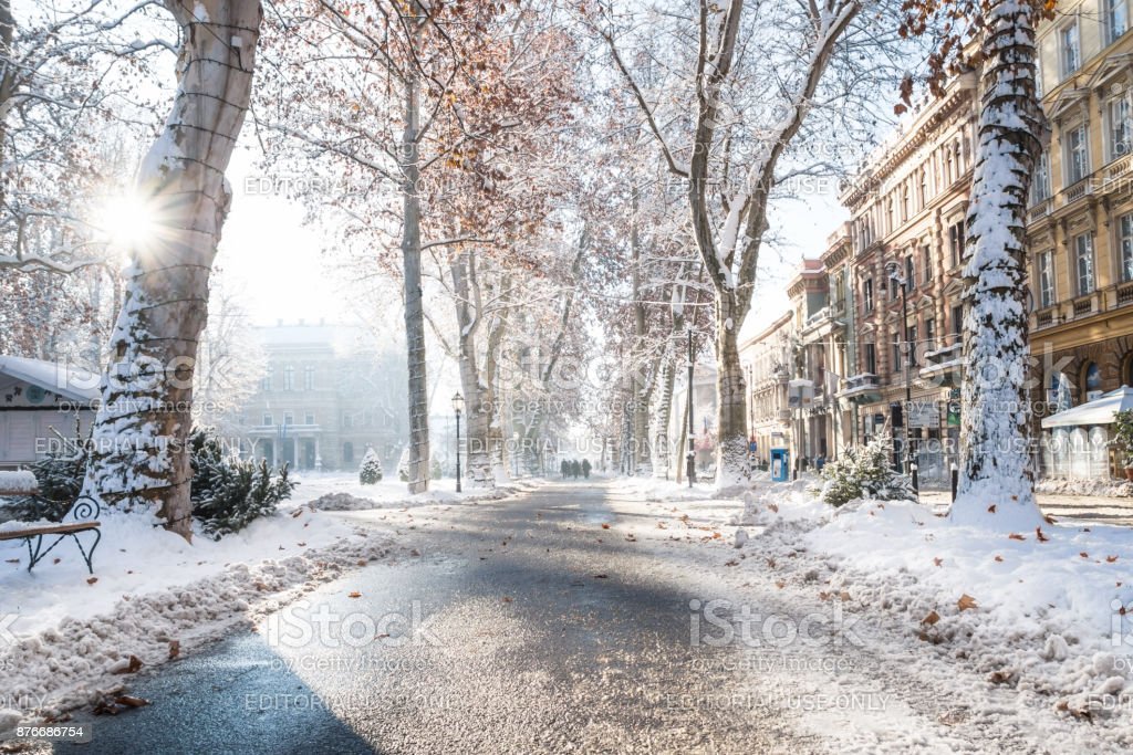 Footpath And Walkers In Zrinjevac Park In Zagreb In Winter Stock Photo Download Image Now Istock