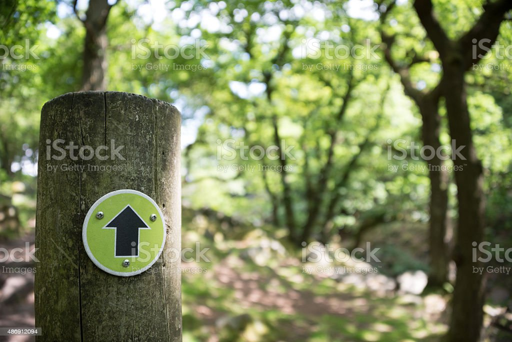 Footpath arrow on a post in a forest. stock photo