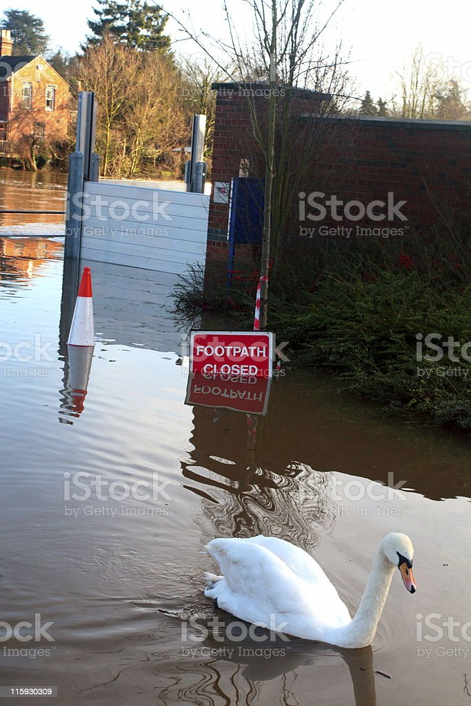 Footpath Closed - Swan Lake stock photo