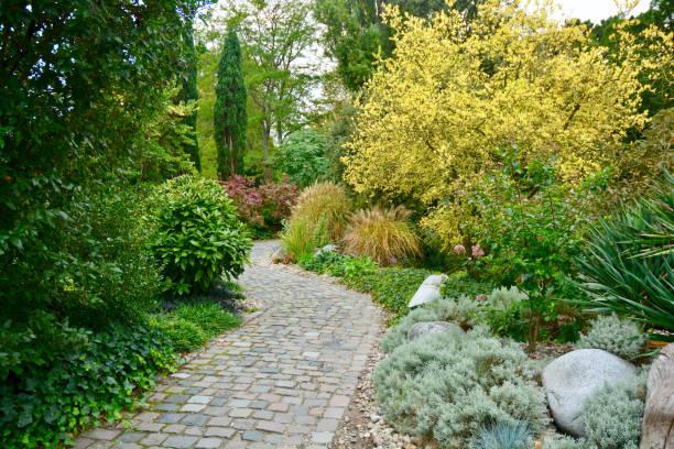 Footpath in Garden stock photo