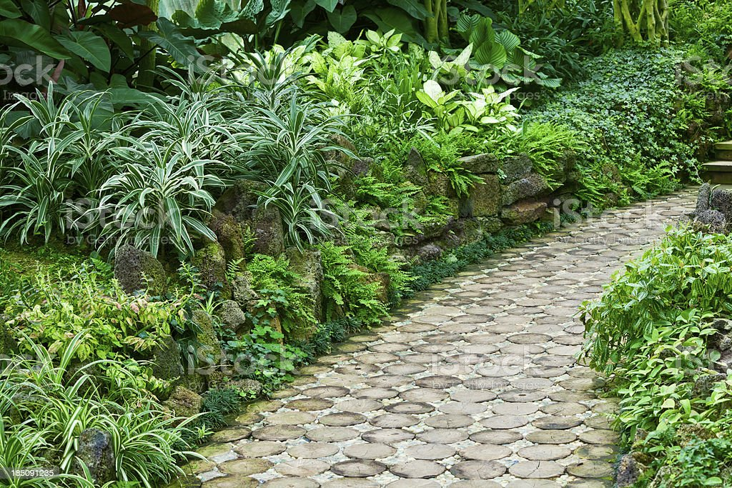 Footpath in garden royalty-free stock photo