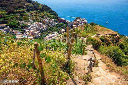 footpath to Manarola in Cinque Terre, Italy