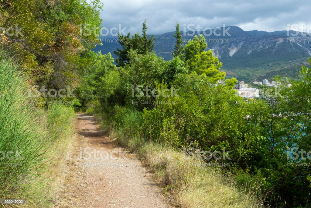 A footpath in the mountains near the sea. In the summer on a cloudy day zbiór zdjęć royalty-free