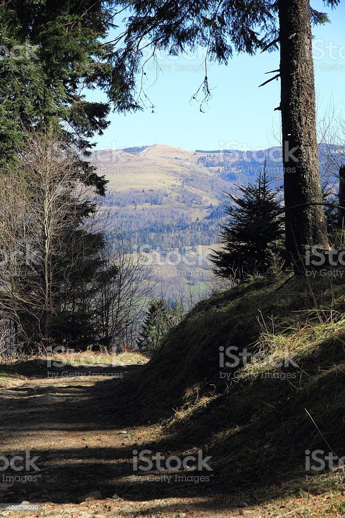 Footpath in the valley of Munster stock photo