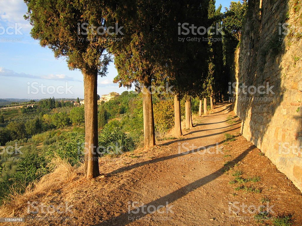 Footpath in Tuscan Sunrise 2 royalty-free stock photo