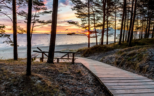 Footpath leafding to a sandy beach of Jurmala, Latvia