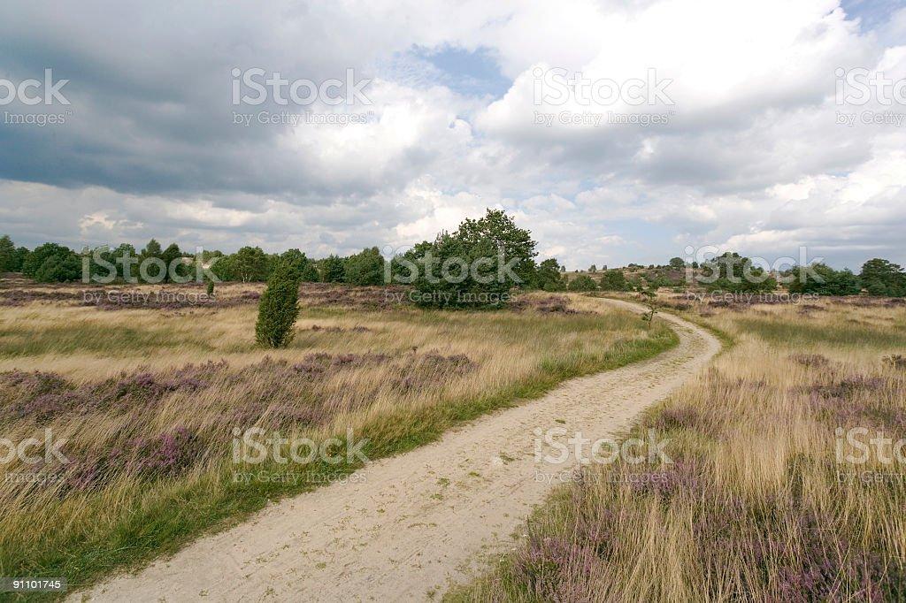 Footpath on Heathland in Lower Saxony / Germany (XXL) royalty-free stock photo