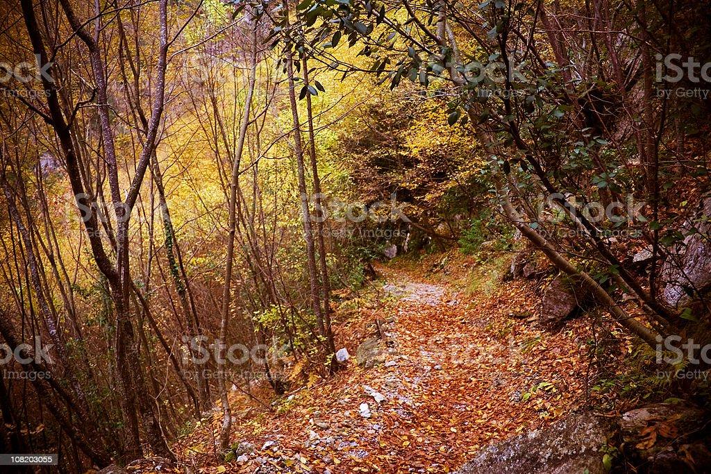 Gehweg auf Olympus mountain trail E4 – Foto