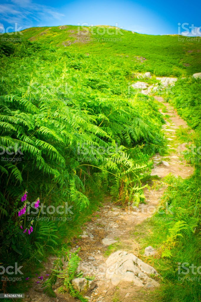 Footpath on the banks of Ullswater stock photo