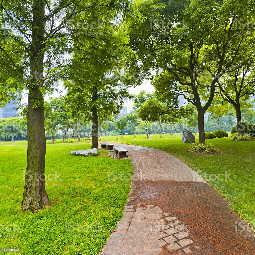 footpath royalty-free stock photo