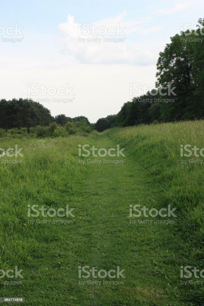 Footpath  Public park in Ile-de-France royalty-free stock photo