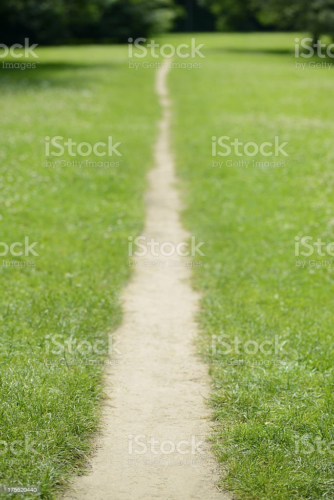 Footpath through green grass royalty-free stock photo
