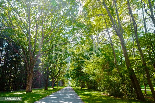 Footpath through Park in New Jersey