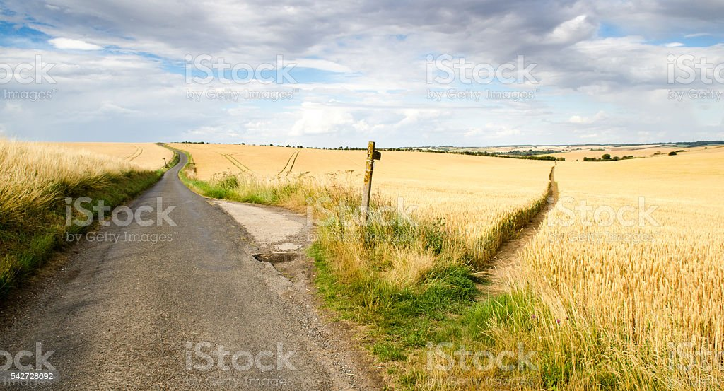 footpath through the fields stock photo
