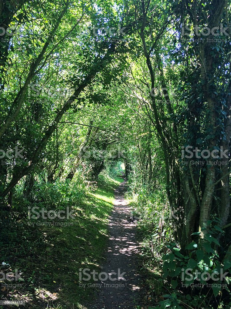 Footpath tunnel near canal royalty-free stock photo