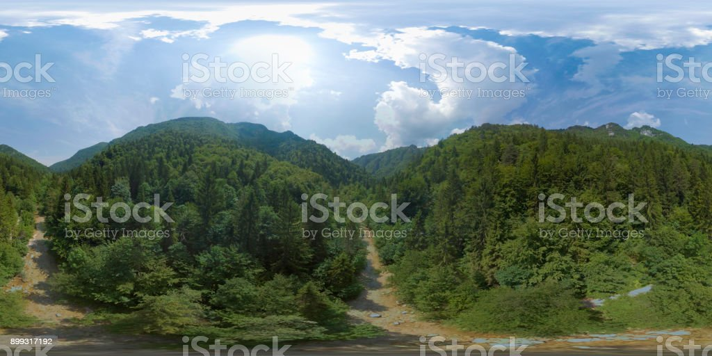 Footpath with trees area stock photo