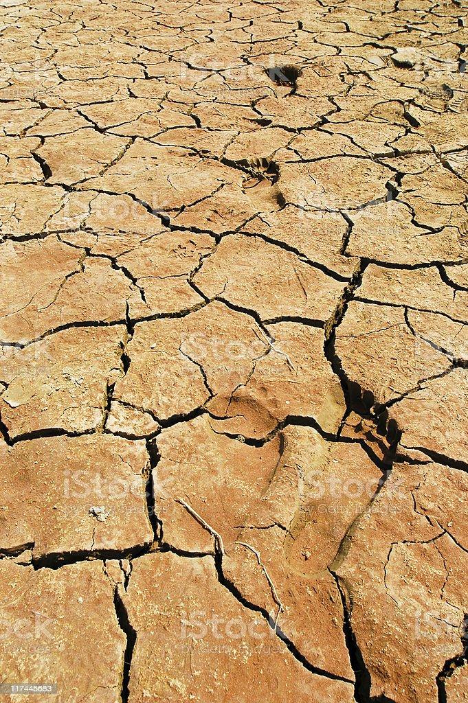 footpints at a dried waterhole royalty-free stock photo