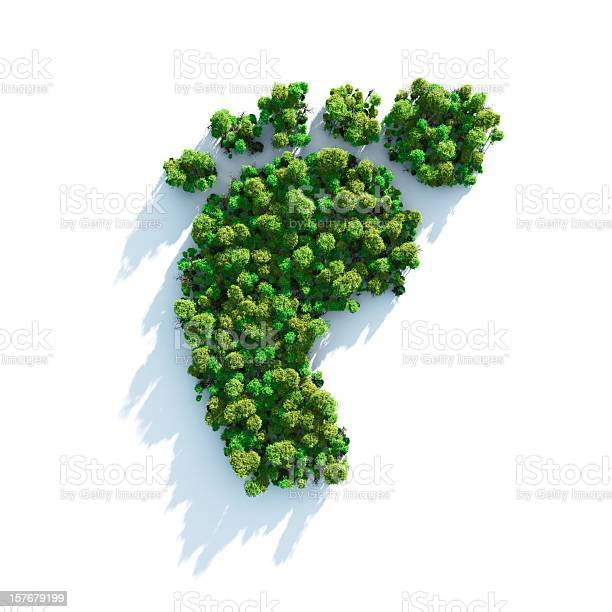 Footprint comprised of greenery and shrubs picture id157679199?b=1&k=6&m=157679199&s=612x612&h=i tpks4zak5yo1tileu m1dgdoc4vaijqnxgaxz3ths=