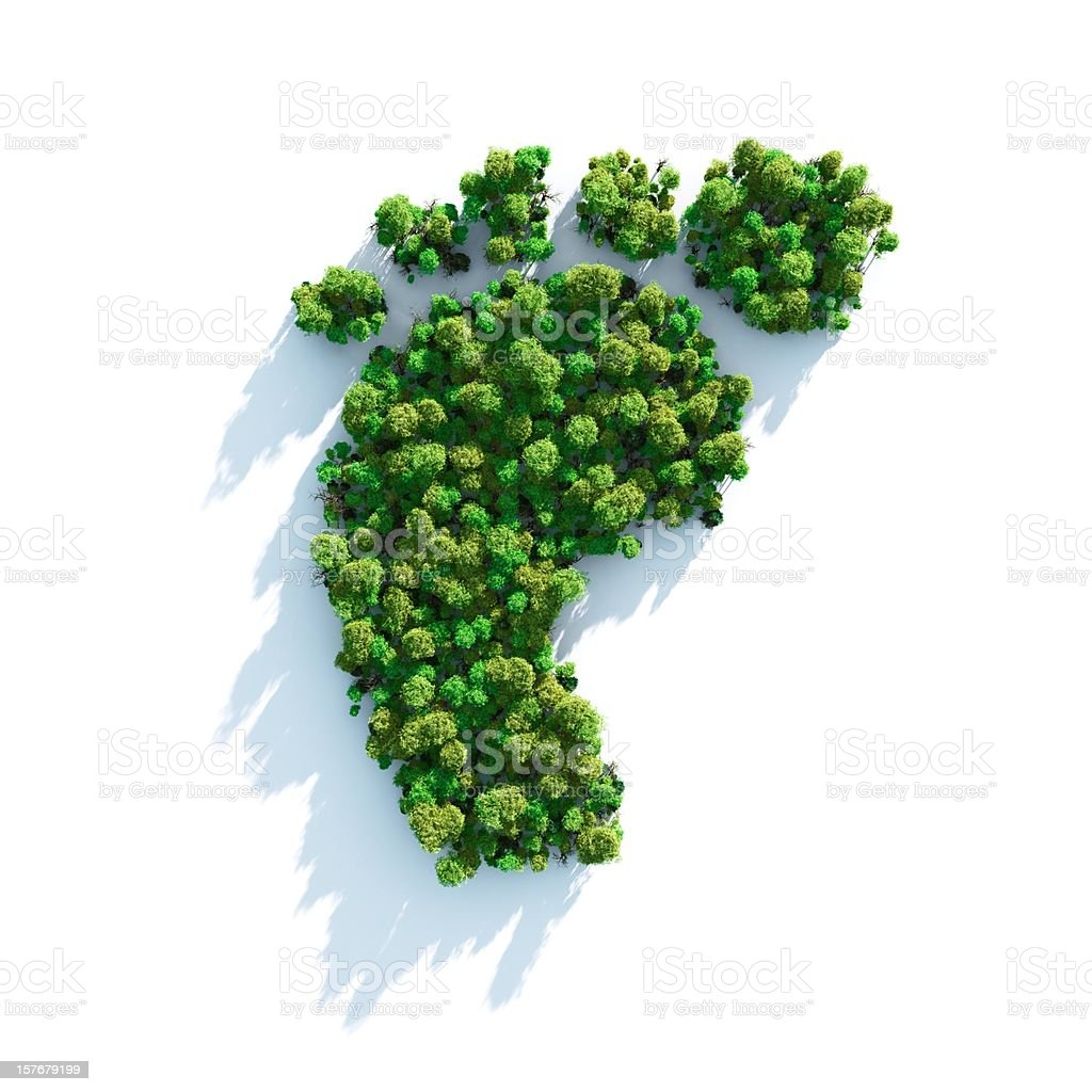 Footprint comprised of greenery and shrubs stock photo