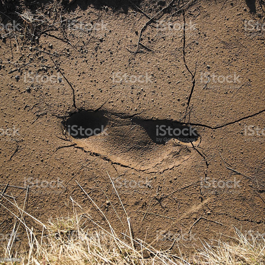 Footprint in cracked soil stock photo