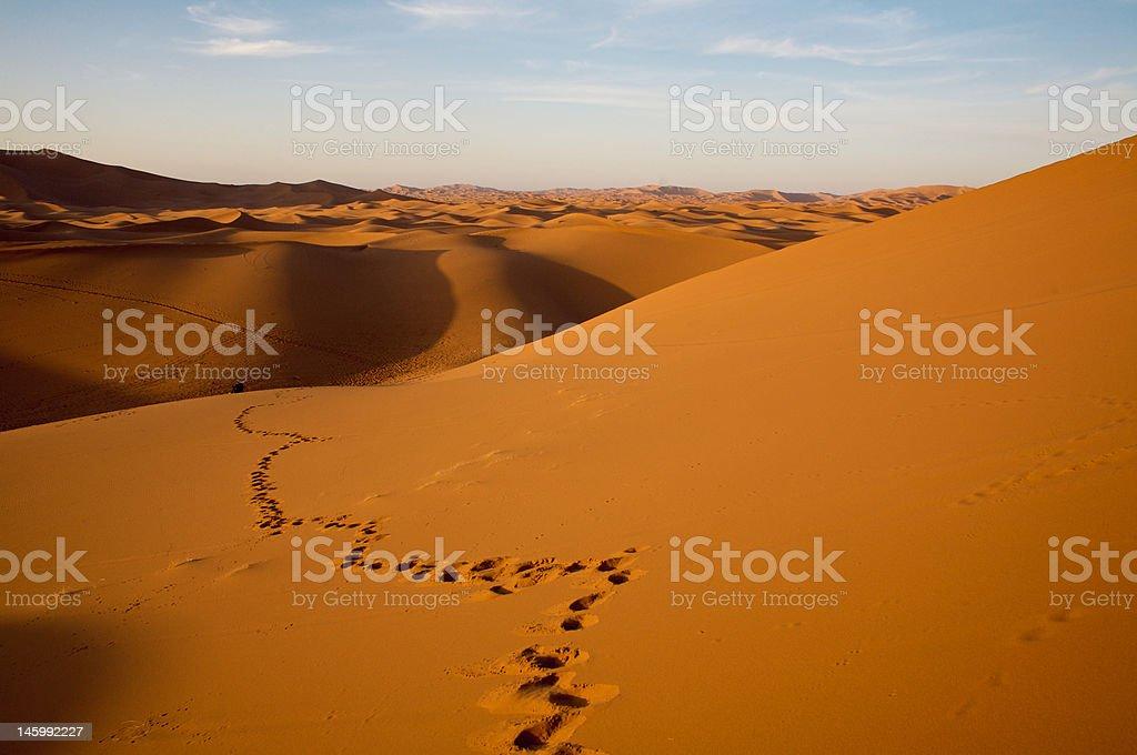 Footprint in desert dunes stock photo