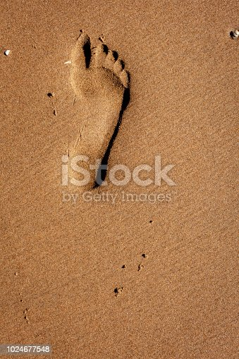 1088451256 istock photo Footprint in the sand 1024677548