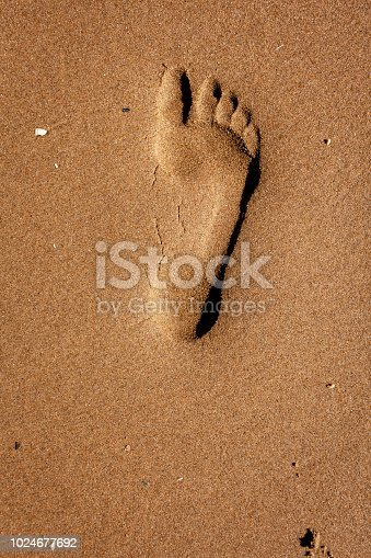 1088451256 istock photo Footprint in the sand 1024677692