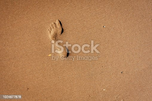 1088451256 istock photo Footprint in the sand 1024677878