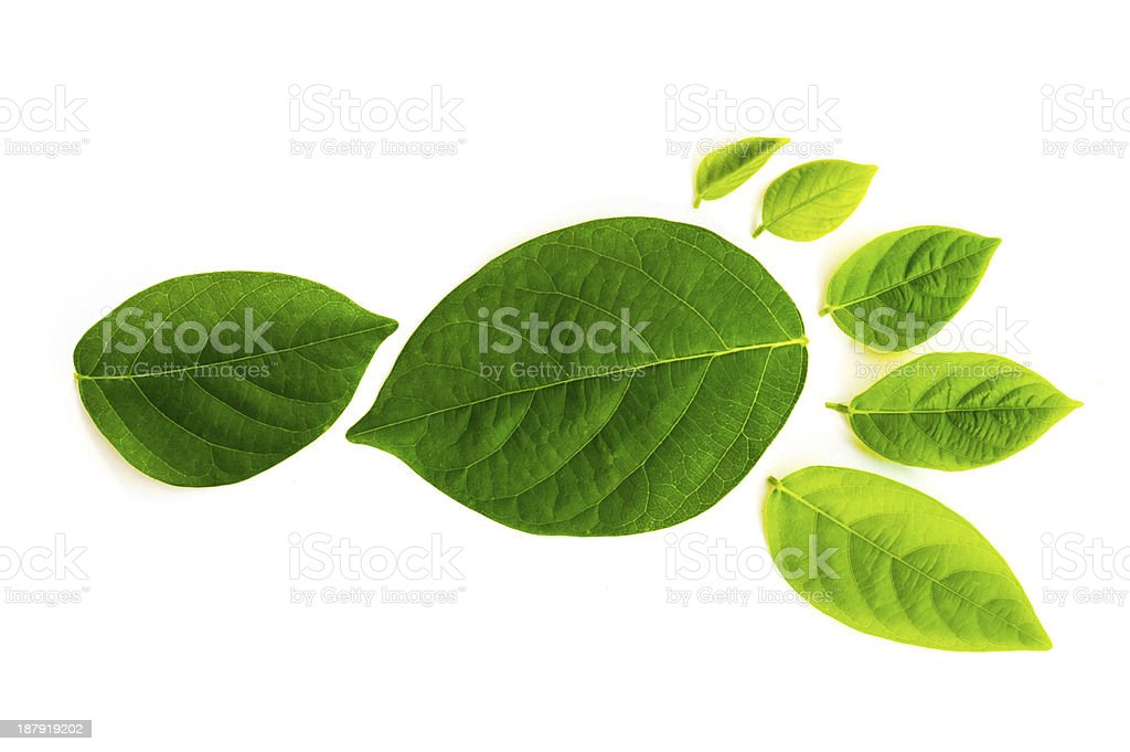 footprint made of green leaves stock photo