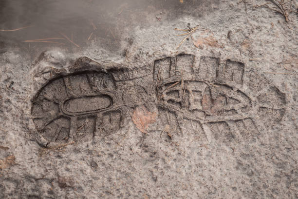 Footprint of a shoe in the mud stock photo