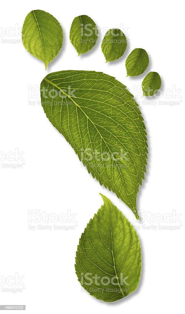 footprint of leaves with clipping path XXL stock photo