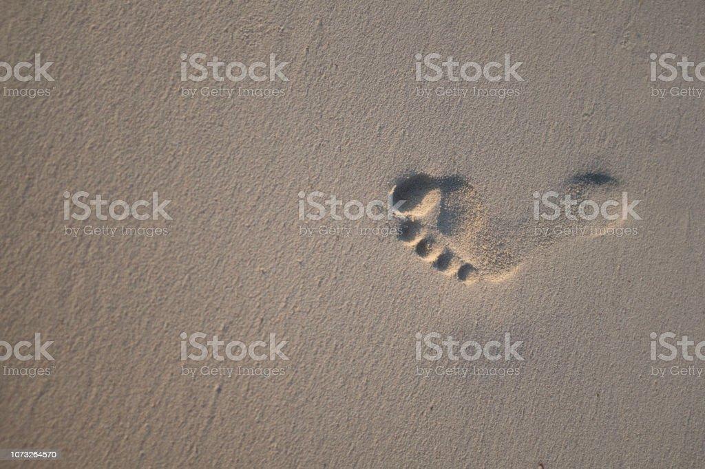 A single human footprint on a sandy beach
