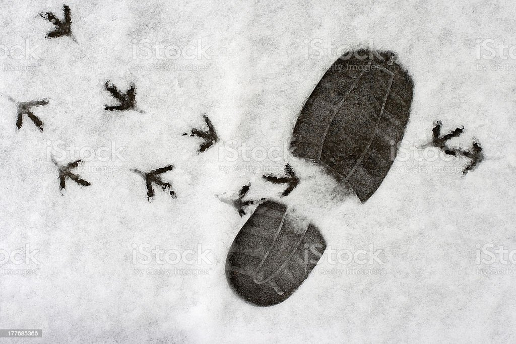 footprints in a snow royalty-free stock photo