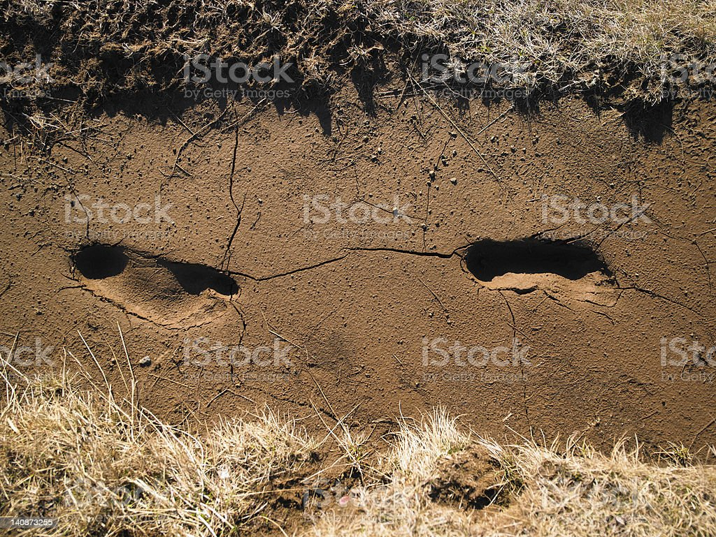 Footprints in cracked soil stock photo