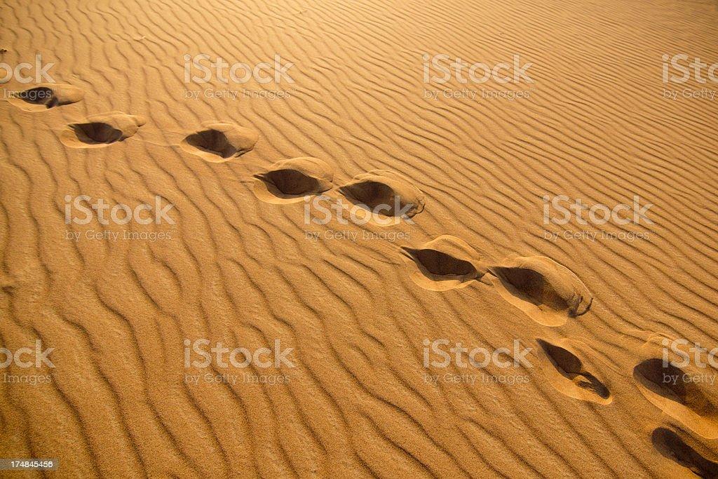 Footprints in dessert royalty-free stock photo