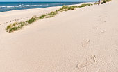 Footprints trail on fine sand on Sylt island beach at the North Sea, Germany. Footsteps in sand. Walking alone on beach. Summer vacation destination.