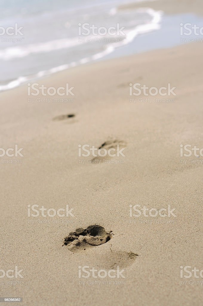 Footprints in sand on the beach royalty-free stock photo