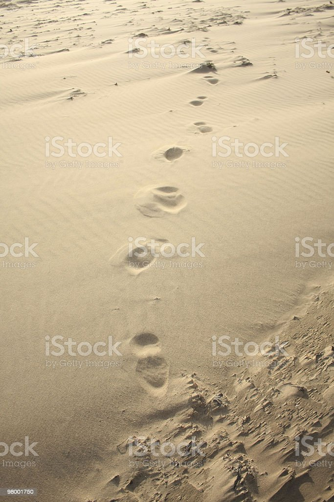 Footprints in Sand royalty free stockfoto
