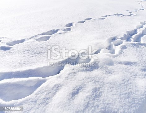 istock Footprints in snow 1307868584