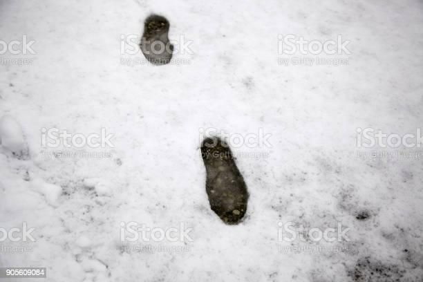 Footprints in snow picture id905609084?b=1&k=6&m=905609084&s=612x612&h=ic690g gnshdwntdhgagyouvm6ka2cfjtwrdqwfaeha=