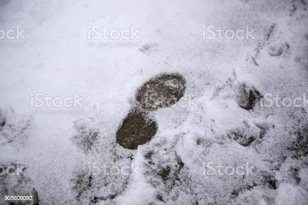 Footprints in snow picture id905609092?b=1&k=6&m=905609092&s=612x612&h=ci csvbp7efn5 xtxjva9gx8mvd26cc iiiflbgreq0=