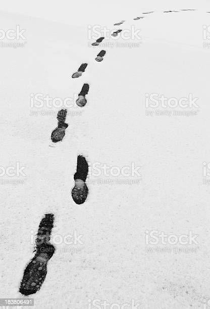 Photo of Footprints in the Canadian Snow
