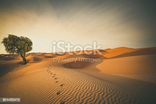 istock footprints in the desert 924450410