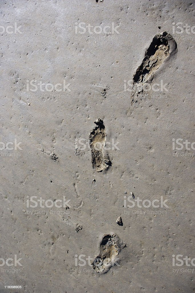 Footprints in the mud stock photo