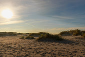 Footprints in the sand among the dunes on the Baltic Sea at sunset.
