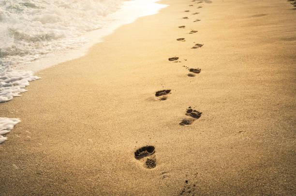 spuren im sand - fußspuren stock-fotos und bilder