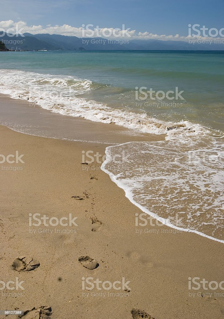 Footprints in the sand. Puerto Vallarta, Mexico royalty-free stock photo